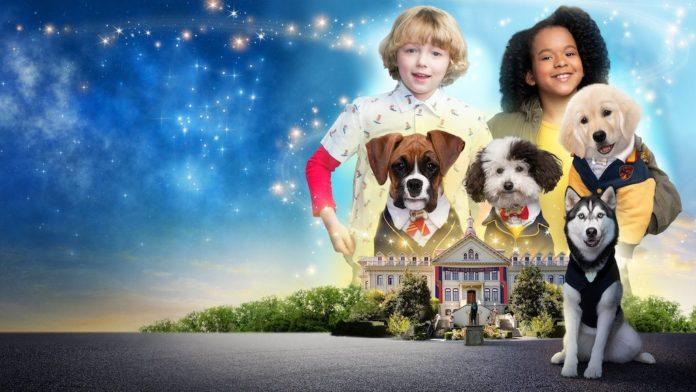 Pup Academy Season 3 Netflix Details